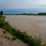 River (43)