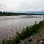 River (44)