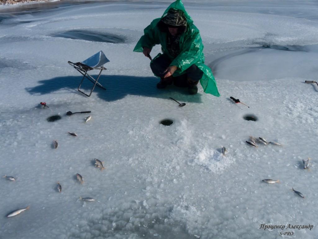 Fishing (7)